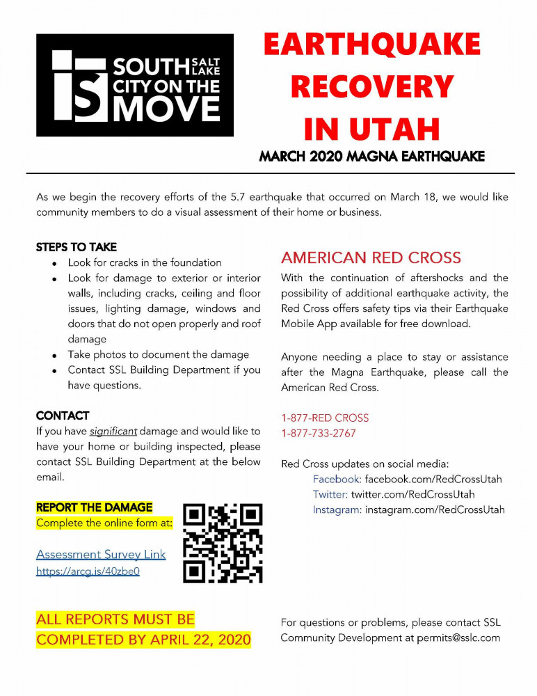 Damage Assessment Flyer - Earthquake